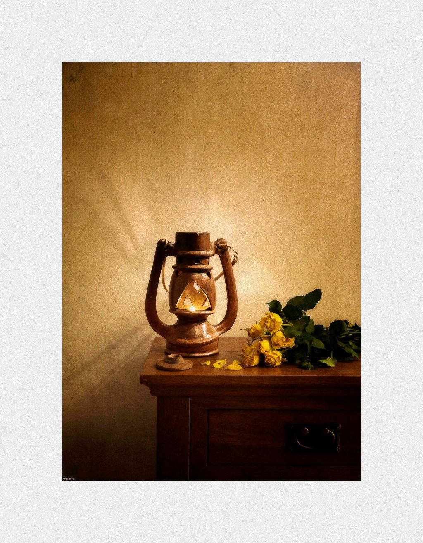 Lamp & Roses low