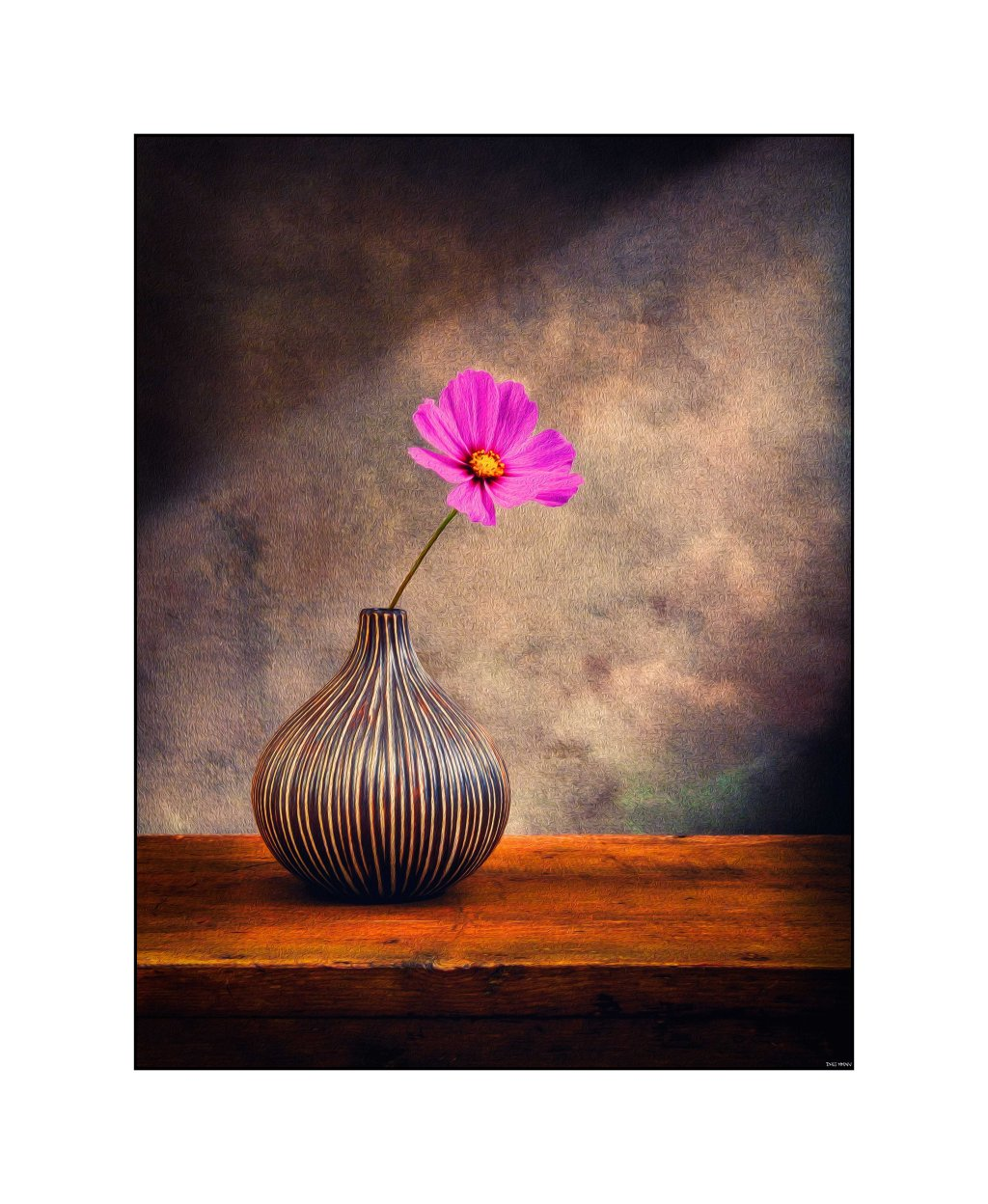 Cosmo and Vase Re-edit #1
