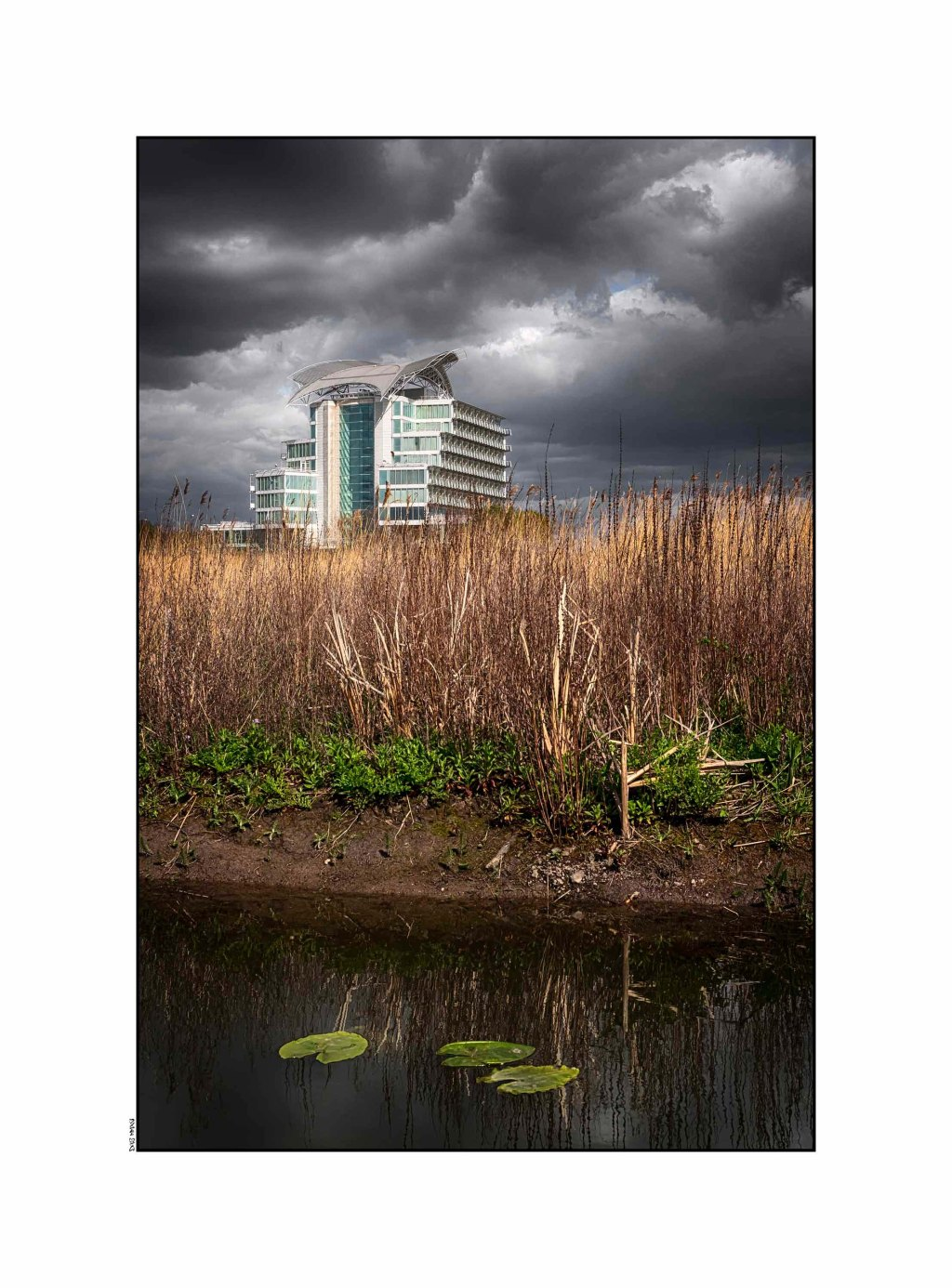 St David's Hotel - Wetlands, Cardiff Bay 2016 #2 low srgb