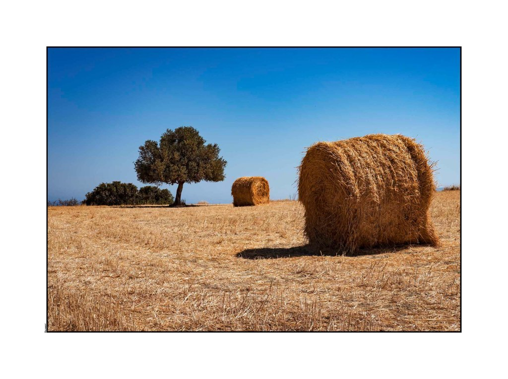 Hay Bale - Cyprus 2016 Optomized
