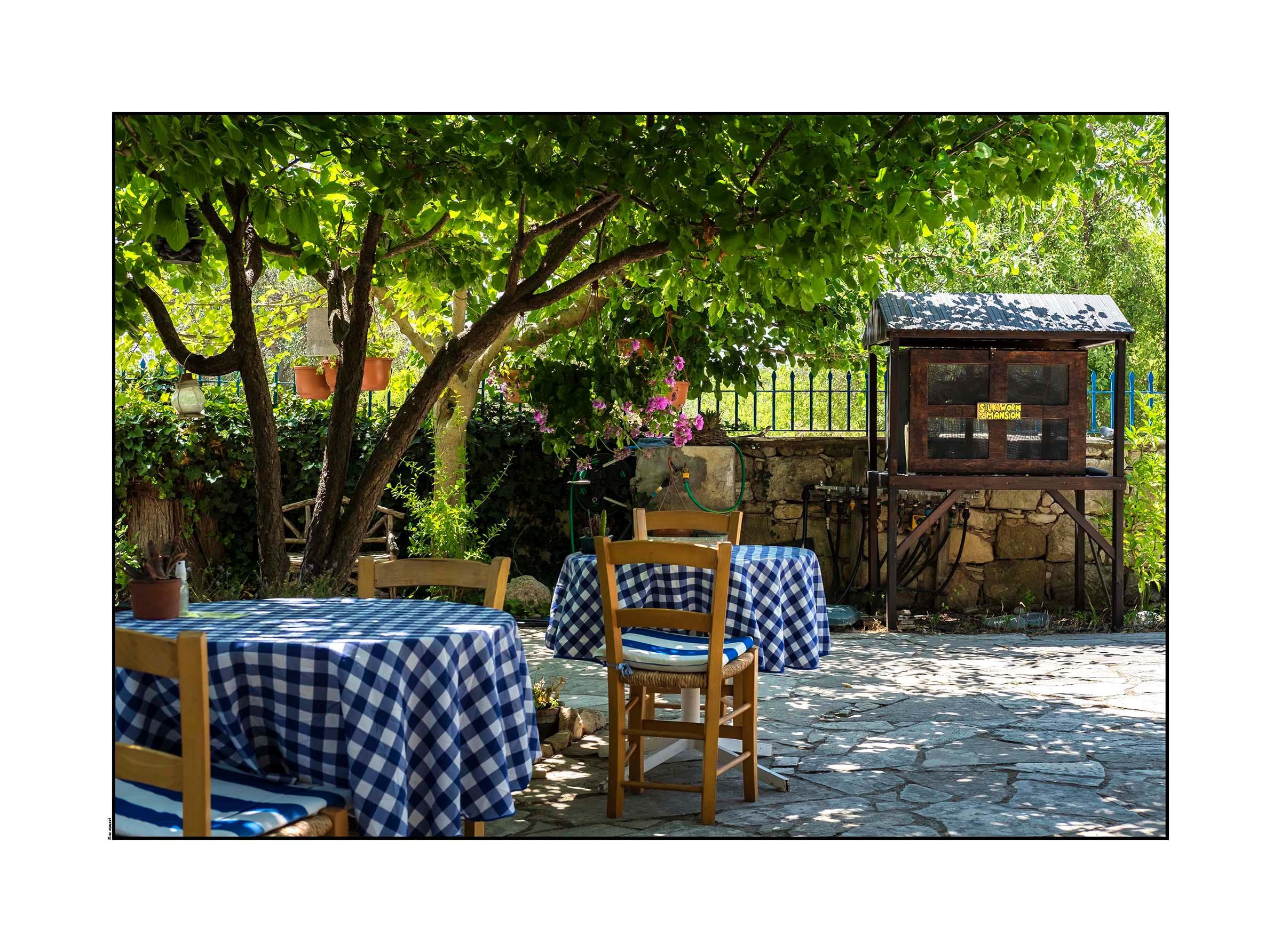 Garden Furniture Cyprus herb garden | pano akourdaleia, cyprus 2016 – darrell steele
