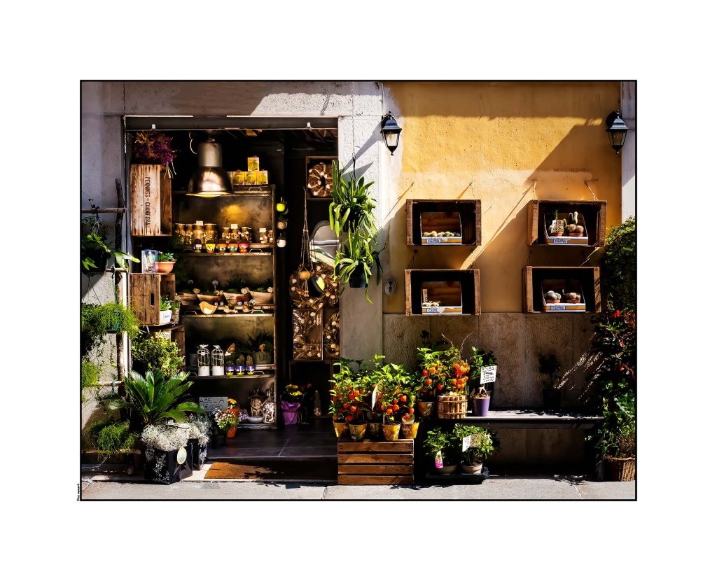 _dsf2420fruit-shop-optomized